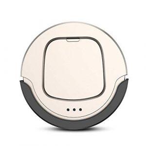 Maybesky Robots Aspirateurs Aspirateur Automatique Intelligent Nettoyage à Distance Contrôle 1300mAh 400ml Spot Box poussière (Couleur : Or, Taille : Taille Unique)
